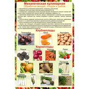 Обработка овощей фото