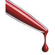 Сбор и хранение стволовых клеток пуповинной крови фото