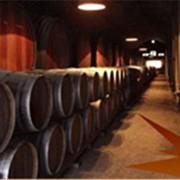 Дигустация вина. Винодельный центр с.Бобовище. фото
