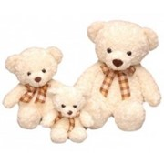 Семья белых Медвежат фото