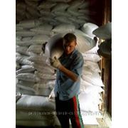 Предоставление разнорабочих, подсобных рабочих, грузчиков фото
