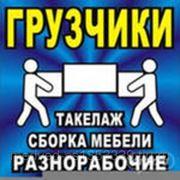Грузчики на все случаи жизни в Костроме. фото