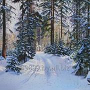 Картина живописная Зимняя дорожка в лесу фото