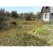 Сад, Верхнее Дуброво,Тюменский тракт, 20 км фото
