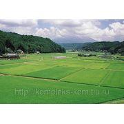 Оформление и регистрация земельных долей из земель сельскохозяйственного назначения фото