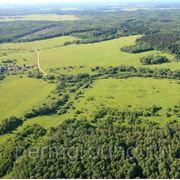 Продажа земельных участков Н.Мулы фото