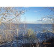 Продажа земельного участка 15 сот Чкаловский р-н ,на Горьковском море фото