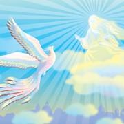 Книга для детей: Волшебная птица с Богом говорила фото