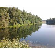 Продам 15 сот. в д. Отяково, Боровский район, Калужская область, 20 км от г. Боровск фото