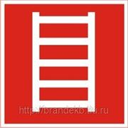 Пожарная лестница фото
