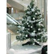 Новогоднее оформление елок фото