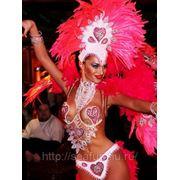 Бразильский костюм для танца, карнавала, корпоратива 3 вариант фото