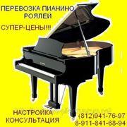 Консультация при покупке рояля Спб фото