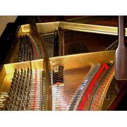 Регулировка механики рояля фото