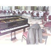 Настройка фортепиано (пианино и роялей) фото