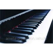 Создание музыкальных произведений «под ключ» фото