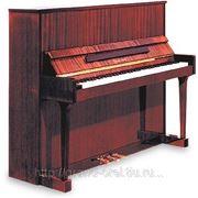 Настройка пианино и роялей в Орле фото