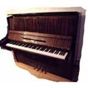 Услуги по настройке пианино в Санкт-Петербурге фото