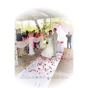 Выездная регистрация бракосочетания фото