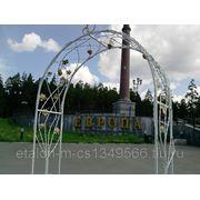 Кованая арка для свадебной церемонии фото