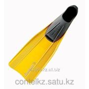 Ласты для плаванья Clio Rondinella фото