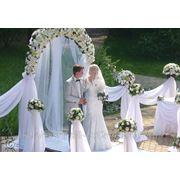 Свадебное агентство в кемерово фото