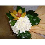 Флористическая композиция фото