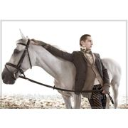 Предложение руки и сердца на белом коне фото