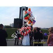 Запуск сердца на воздушных шарах с гелием фото
