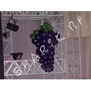 Гроздь винограда из воздушных шаров фото