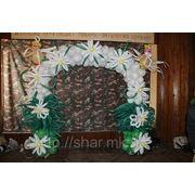 Свадебная арка из шаров. Николаев фото