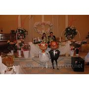 Оформление свадьбы, воздушные шары для оформления свадьбы
