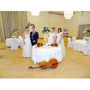 Выездная церемония бракосочетания «под ключ». Живая музыка, изысканное оформление, лучшие ведущие. фото