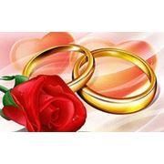 Свадебный кортедж фото