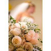 Организация свадьбы,Донецк фото