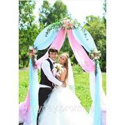 Арка свадебная (два цвета) фотография