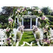 Организация свадебной выездной церемонии