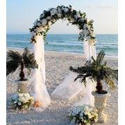 Свадебная выездная церемония в подарок! фото