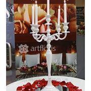 Аренда свадебного декора, текстиля, стойки, арки, колонны, чехлы на стулья, белые канделябры напрокат фото