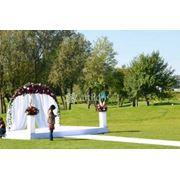 Цветочная арка для росписи, свадебные арки из цветов, арка для выездной церемонии фото