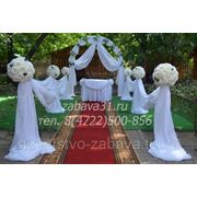 Оформление свадебной выездной регистрации фото