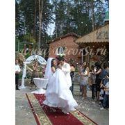 Организация и оформление выездной регистрации брака в Тольятти фото
