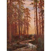 Копии пейзажей, копии Иван Шишкин фото