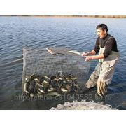 Рыбалка Костанайская область фото