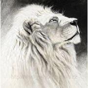 Аэрография белый лев на ноутбуке фото