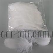 Перья белые 5-15 см 100 шт 3661 фото