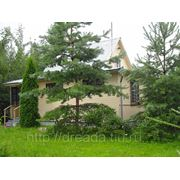 Продажа дома 80 кв.м., 11 соток, д. Алопово, Жуковский р-н, Калужская область фото