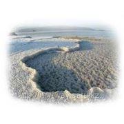 Мертвое море: отдых и лечение фото