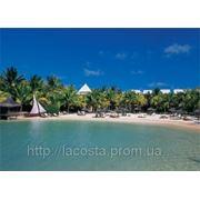 Пляжный отдых на о-ве Маврикий, отель LE PARADISE COVE & SPA HOTEL 5* фото