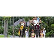 Свадьба на Бали фото